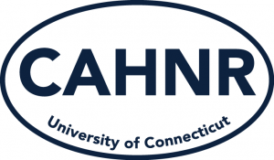 clear back CAHNR oval bumper sticker