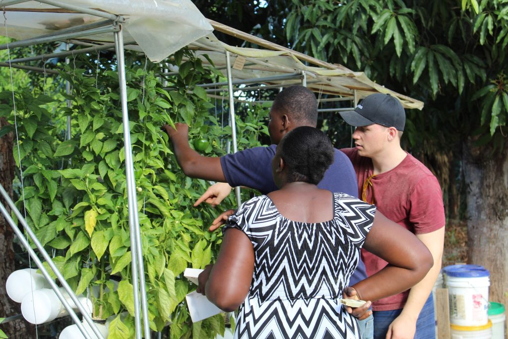Christian Heiden works with members of the Levo team in Haiti.