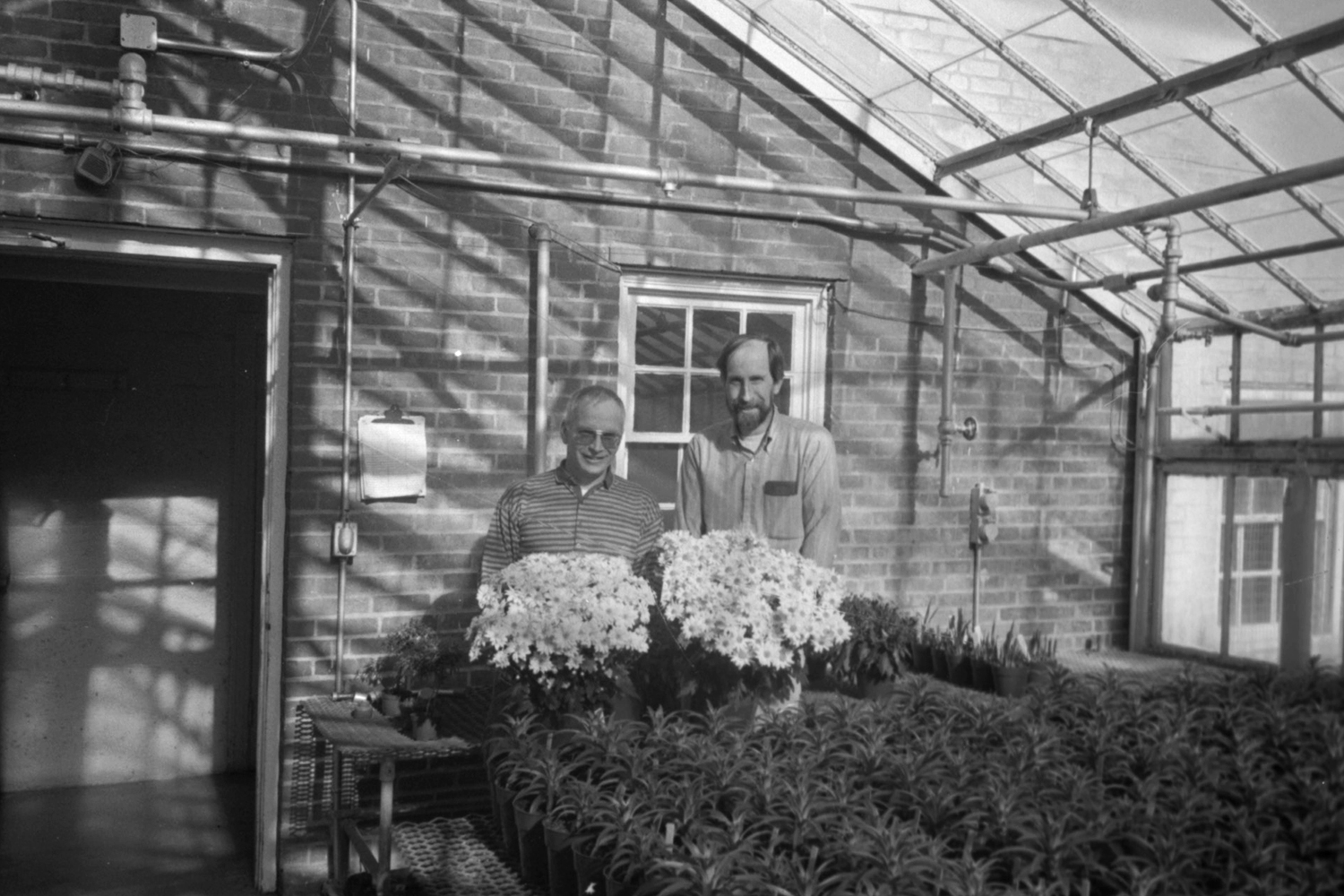 Two men posing with plants in a greenhouse