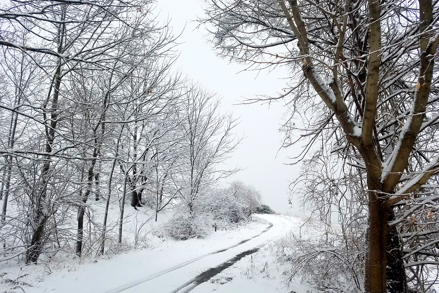 a snow covered path