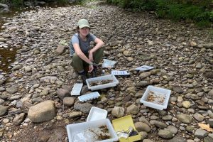 Chloe Edwards working for the Farmington River Watershed Association.