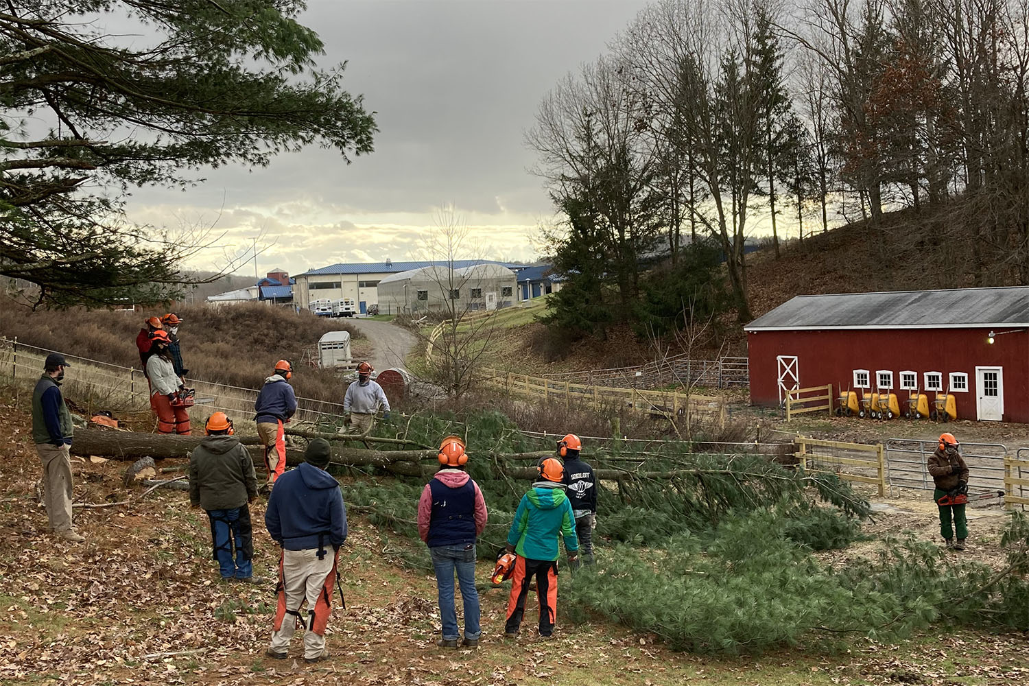 Solid Ground Program supports next generation of CT farmers